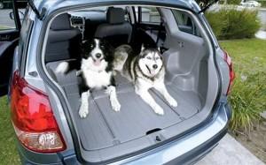 Toyota Matrix багажник